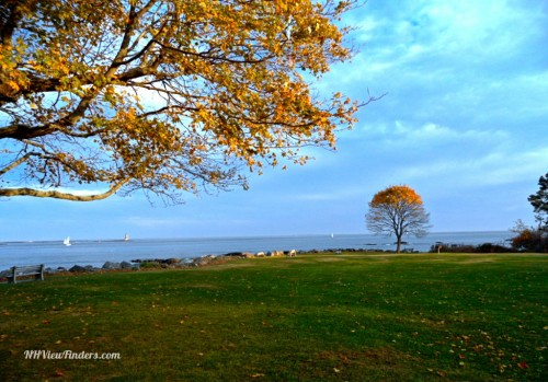 Great Island Common.